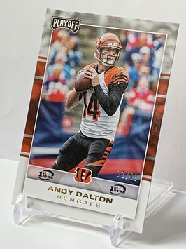 Andy Dalton (Bengals) 2017 Playoff 1st. Down #19