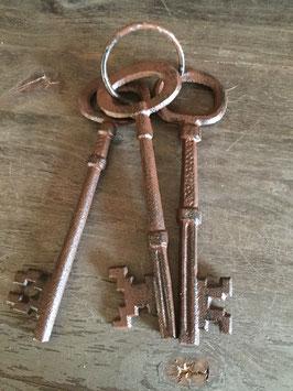 Bos oude sleutels