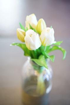 Tulpenbund 5Blüten 28cm