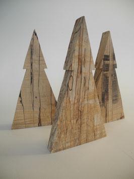 --FICHTE--Tannenbaum aus gestockter Buche/Birke