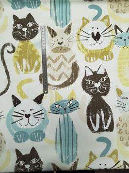 Chats pastels coton