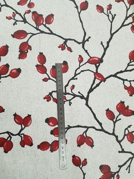 Eglantines rouges enduit