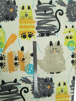 Chats Miau enduit