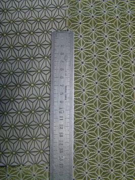Géométrique vert
