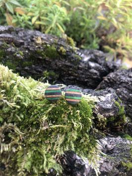 Ohrstecker Birkenfurnier klein grünblau