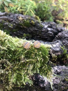 Ohrstecker Birkenfurnier klein graublau