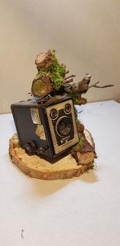 Camera en Natuur 7