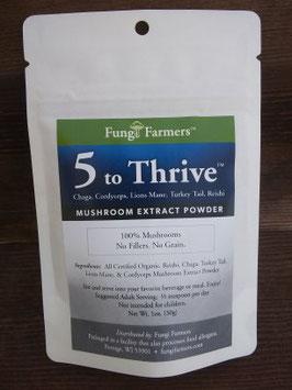 5 to Thrive Mushroom Extract