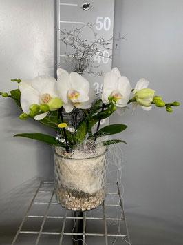 Orchidee im Glas mit Deko