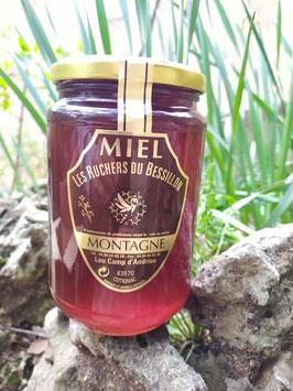 Miel de montagne (ou forêt)  kg verre