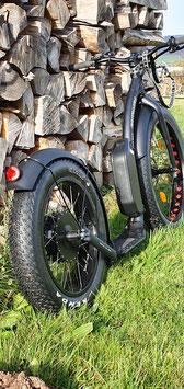 E-Dogscooter auf der Basis eines FatMax von Kickbike
