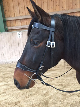 Spanish bridle Barrocco