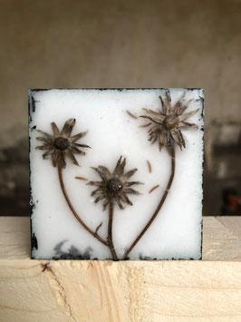 "Wachsmini ""Dried Flower 19"""