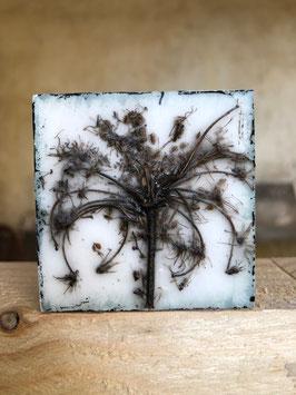"Wachsmini ""Dried Flower 09"""