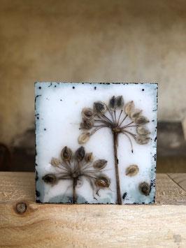 "Wachsmini ""Dried Flower 10"""