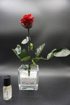 QUUQ 017 kit completo da appoggio bicchiere vetro con rosa rossa e fragranza alla rosa