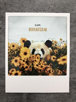 Postkarte Pickmotion zum GEBURTSTAG (Panda mit Sonnenblumen)