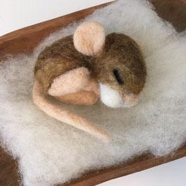 Schlafende Baby Maus