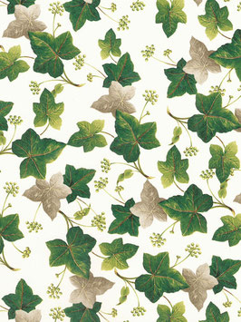 IVY MAPLE CHINTZ