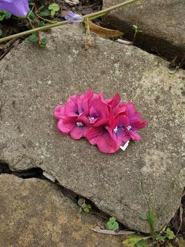 Kleiner hortensienbogen