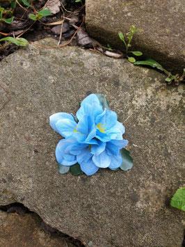 Kleine blaue Blüte
