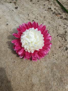 Haarblüte rosa-weiß