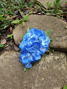 Blaue Hortensien Haarblüte