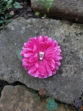 Rabenschädel Blüte