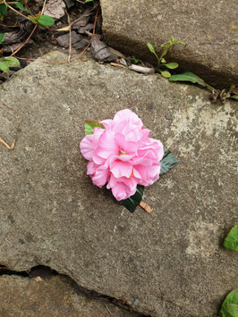 Kleine rosa Haarblüte mit Blätter