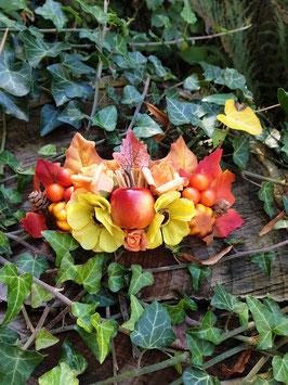 Große Herbstspange