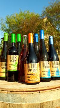 Bunte Weinprobe