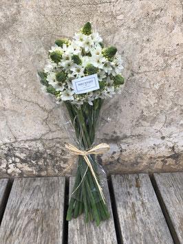 Bouquet de Ornithogalums, una flor de temporada muy duradera