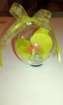 Sphère  d'Orchidée