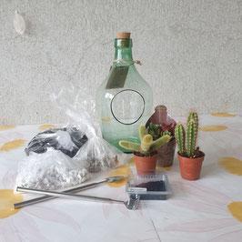 DIY pakket ~ Open terrarium/ mini-woestijn + stappenplan
