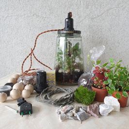 Mini Ecosysteem - Vulling voor Kesbeke lamp