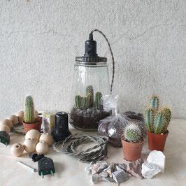 Mini woestijn - Vulling voor Kesbeke lamp