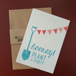 Send & Grow cards - Hooray plan a party
