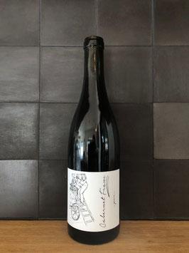 Weingut Brand - Cabernet Franc Pur 2017
