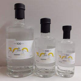 THE 100 GIN