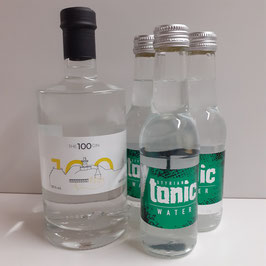 THE 100 GIN - Set