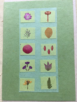 Postkarte 10 Blüten