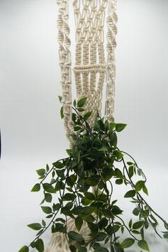 Pakket macramé plantenhanger maar dan anders