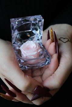 Diamond Rose (rosé)
