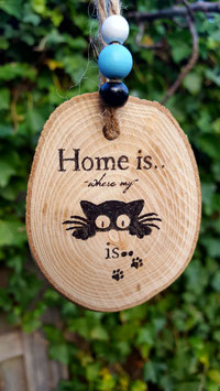 HOME is...cat
