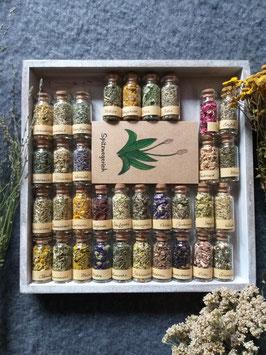 Seelen-Apotheke / Kräuter-Set / Orakelkarten / Seelenbotschaften / Divination / Kräutermagie / Seelenpflanzen