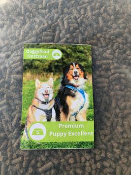 Premium Excellent Puppy