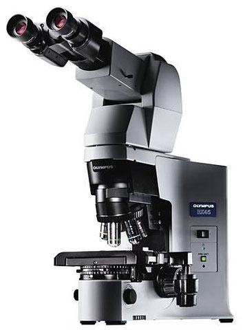 Maintenance microscope par Claude Gonon Microscopie