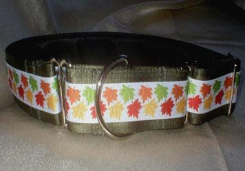 Martingale, Halsband, 4cm, Gurtband olivgrün, Borte mit buntem Laub