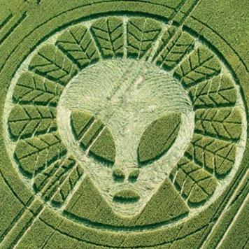 Kornkreise Symbole aus dem All