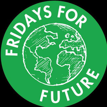 Fridays for Future FfF GER Germany Deutschland DE Klimastreik Avatar Logo